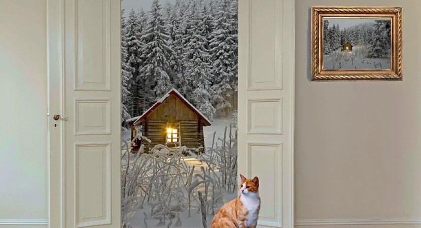 mutare la casa noua iarna